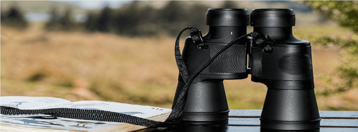 Image of binoculars placed on a table, used to represent the task of looking for a WordPress theme