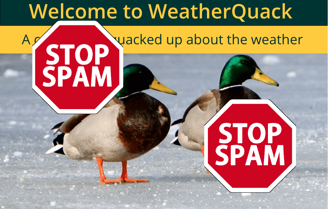 Weather Forecast: Cool WordPress Managing With no Chance of Spam Signups